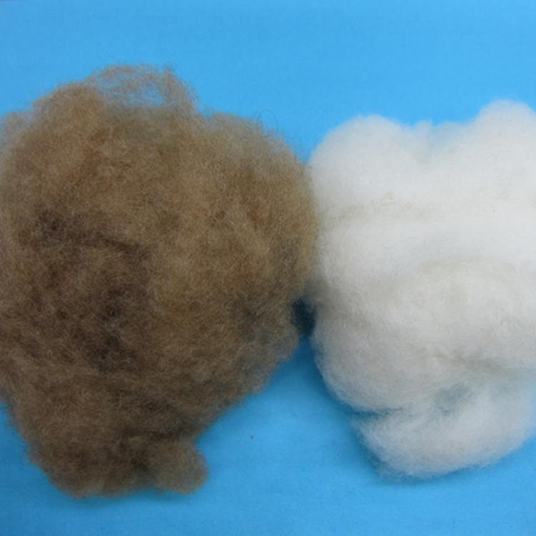 供应 优质绵羊绒原料 环保绵羊毛