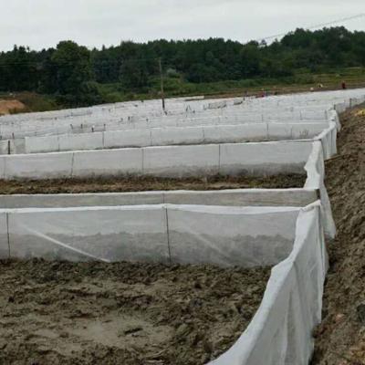 生产养殖用的网子加厚防逃围网宽幅全好料防老化
