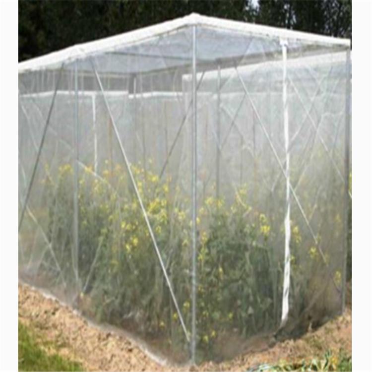 茂伦果树防虫网透光好加厚防虫网40目大宽幅好用