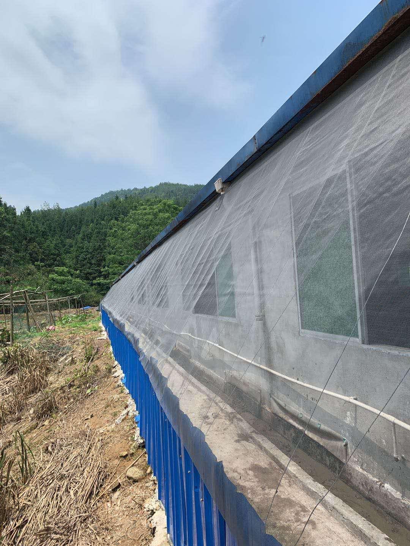 供应结实透风防蚊网猪场尼龙防蚊网大宽幅定做好用