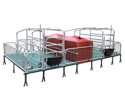 衡水批发复合母猪产床按需定制-牧泽