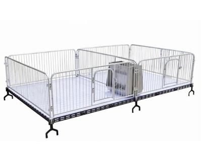 邢台厂家小猪仔猪保育栏安装方便-牧泽